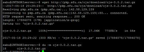 OJS 3 0 2 download file size disparity - PKP Community Forum